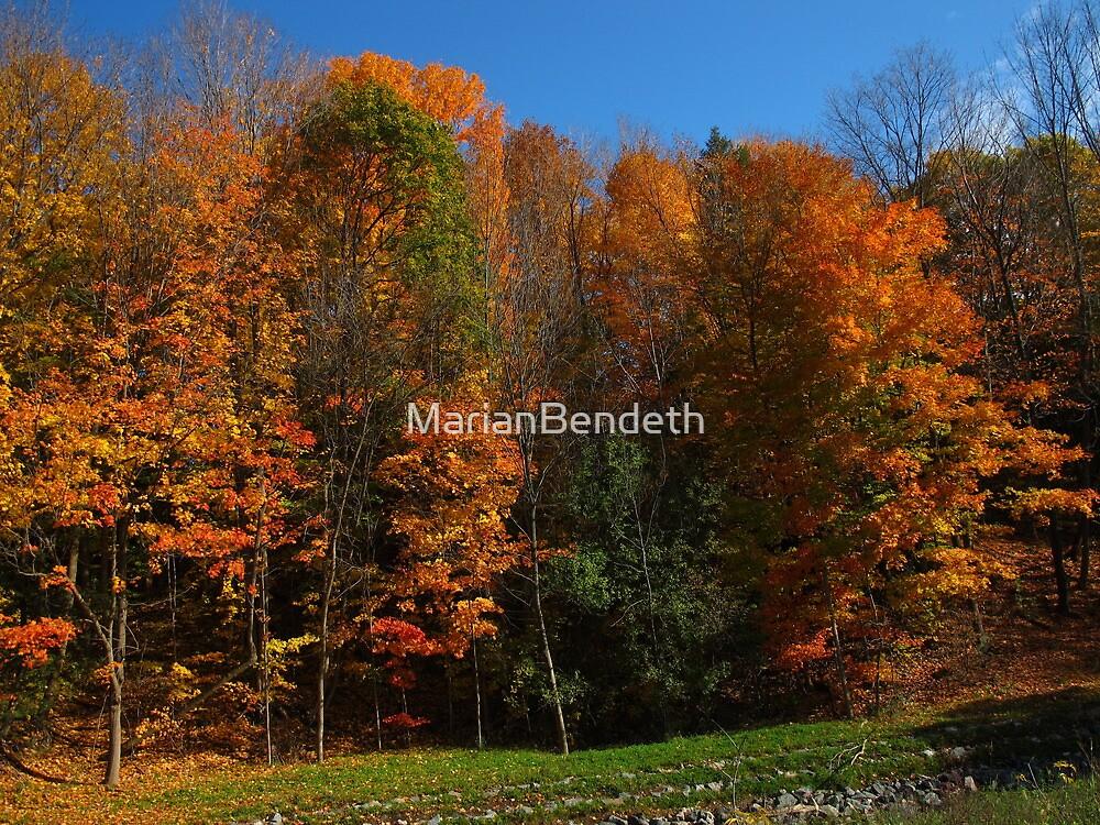 Fall momentum by MarianBendeth