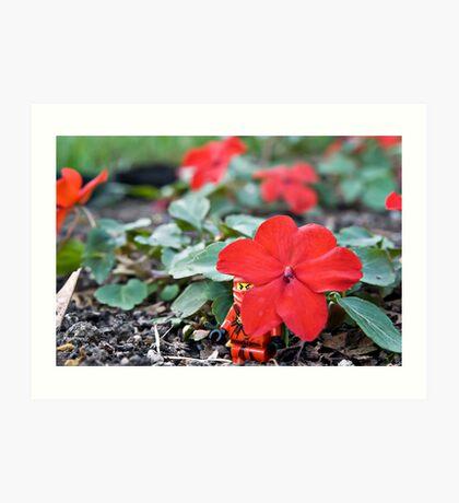Red Ninja Petals Art Print