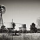 Deserted Windmill by Dilshara Hill