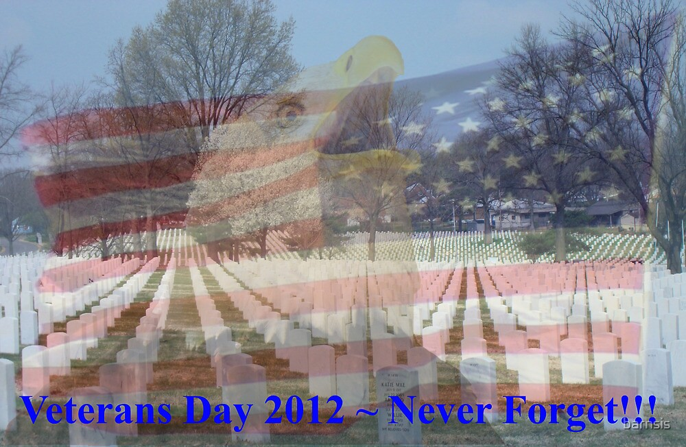 Veterans Day 2012 by barnsis