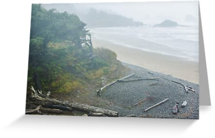 Indian Beach at Ecola State Park by Jim Stiles