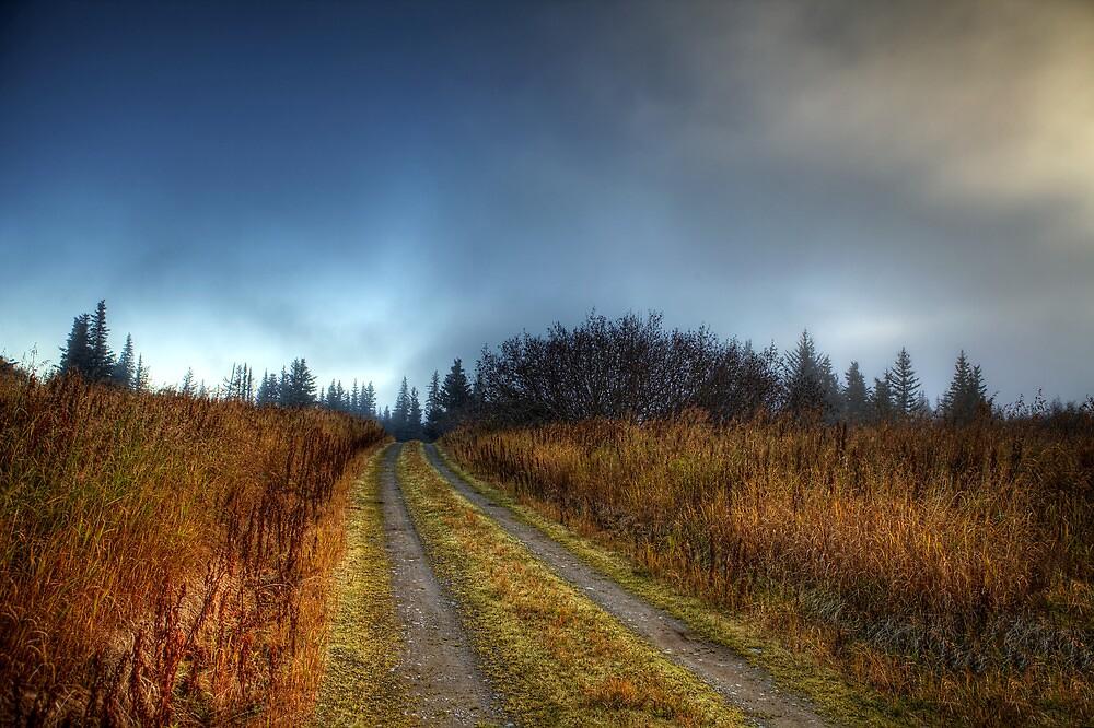 My Lonely Road by mcornelius