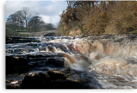 Stainforth Force, Yorkshire Dales  by Irene  Burdell