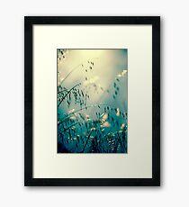 Spring dreaming Framed Print