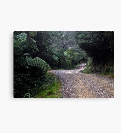 The Long Road to Freedom Canvas Print