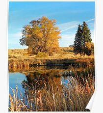 A Reflection of Fall Poster