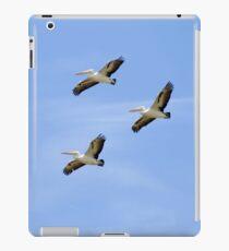 Flock iPad Case/Skin