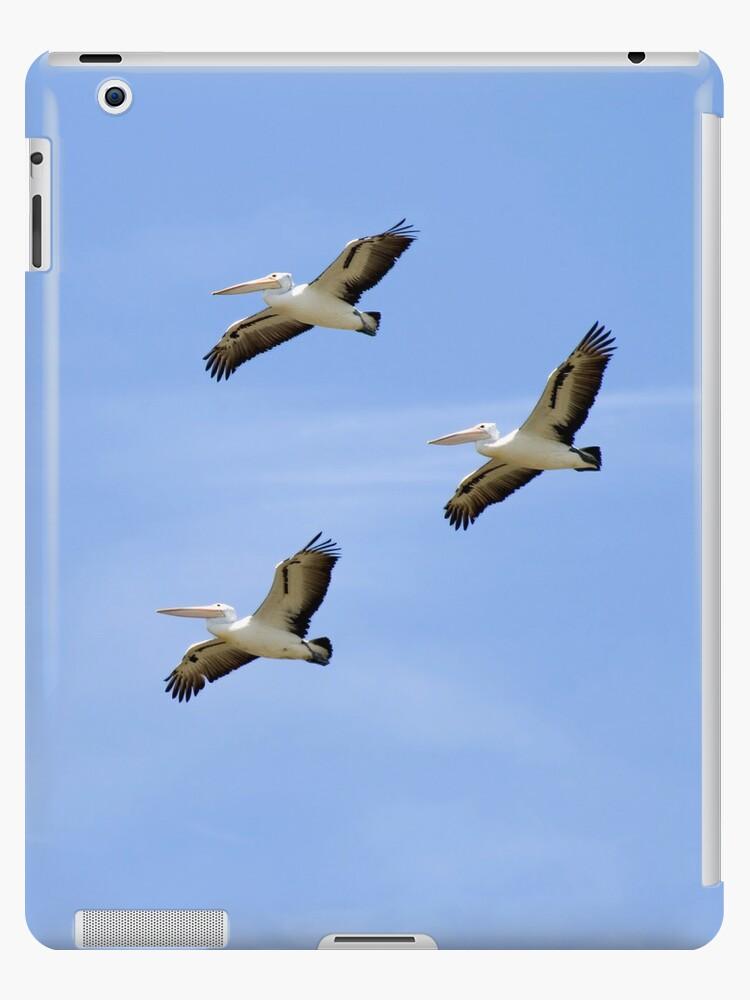 Flock by Walter Quirtmair