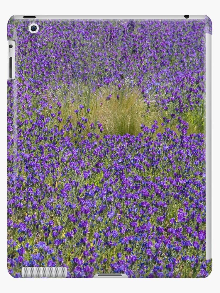 Purple Meadow by Walter Quirtmair