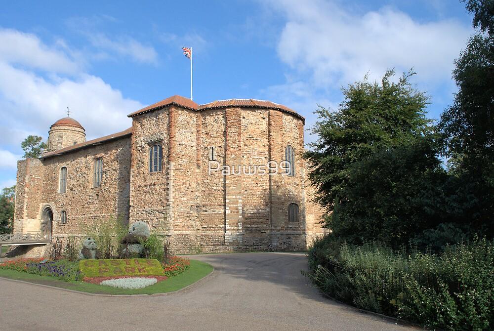 Colchester Castle by Pauws99
