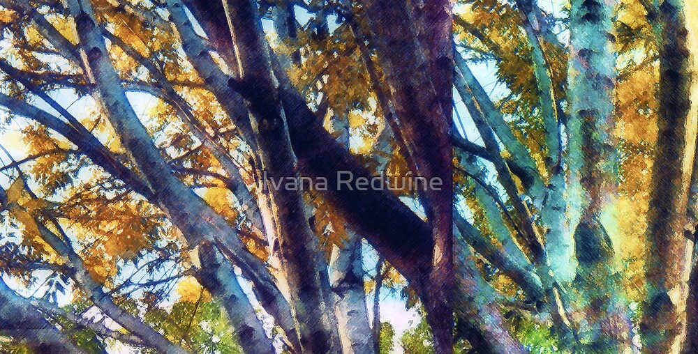 Abstracted Composition With Trees and Branches - Version Two by Ivana Redwine