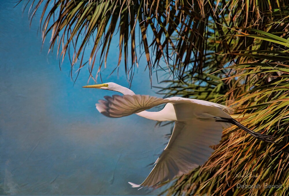 Grace By The Palm by Deborah  Benoit