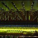 Setting the bar by redscorpion