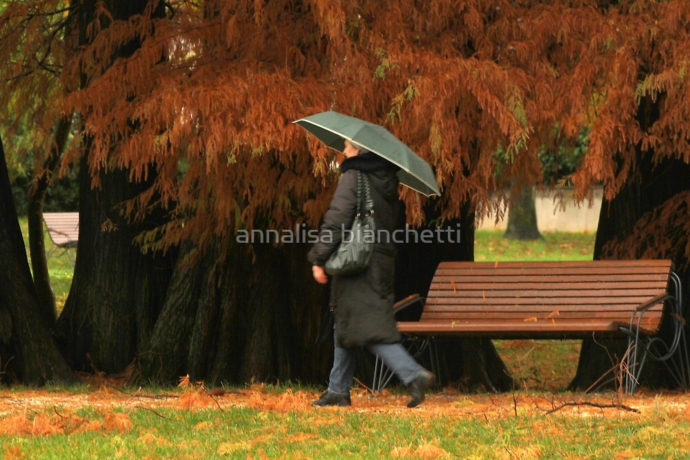 Walking in the rain by annalisa bianchetti