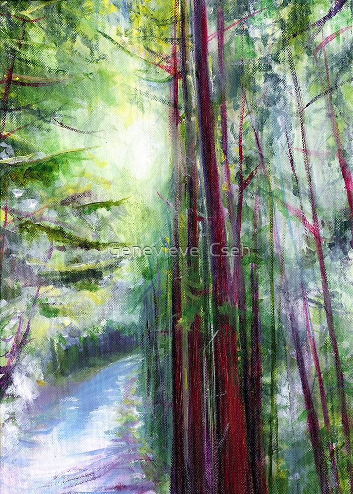 Redwoods & Sunshine by Genevieve  Cseh