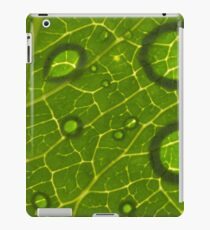 Water Drops on Leaf iPad Case/Skin