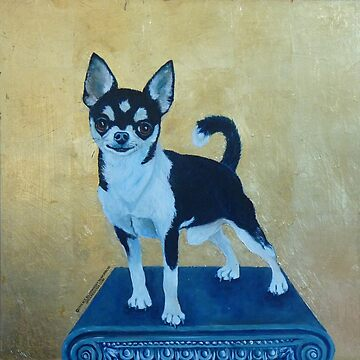 Jet! Short haired Chihuahua by grounddogs