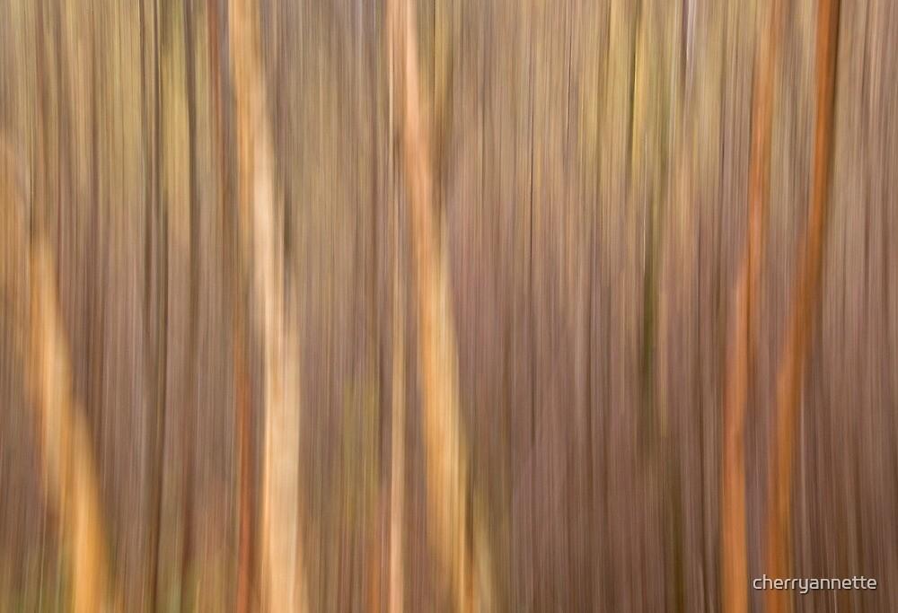 Autumn Forest by cherryannette