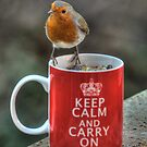Keep Calm and Carry On Robin! by brianfuller75