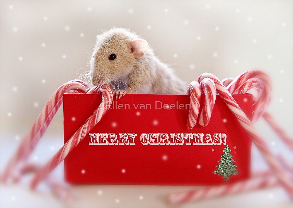 Merry Christmas and a Happy New Year! by Ellen van Deelen