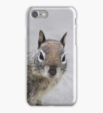 Ground Squirrel iPhone Case/Skin