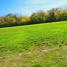 Old Baseball field by agreement