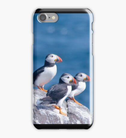 Puffins ~ Isle of May iPhone Case/Skin