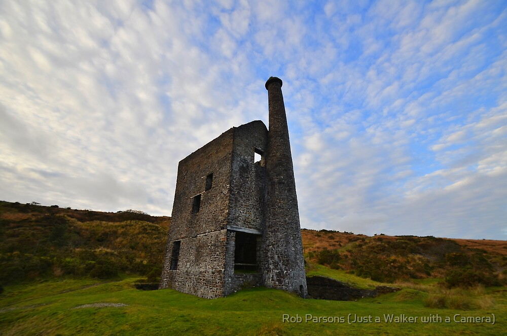Dartmoor: Wheal Betsy by Robert Parsons