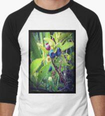 Blueberry Surprise Men's Baseball ¾ T-Shirt