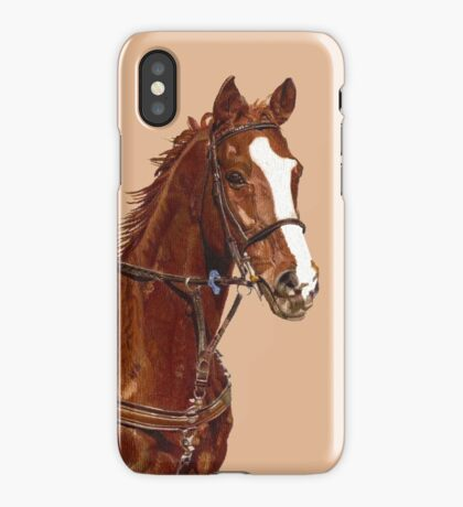 Pretty Thoroughbred iPhone & iPod Cases iPhone Case