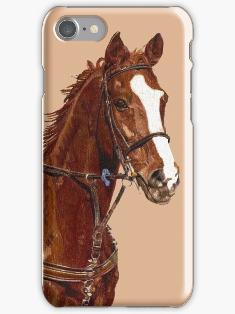 Pretty Thoroughbred iPhone & iPod Cases by Patricia Barmatz