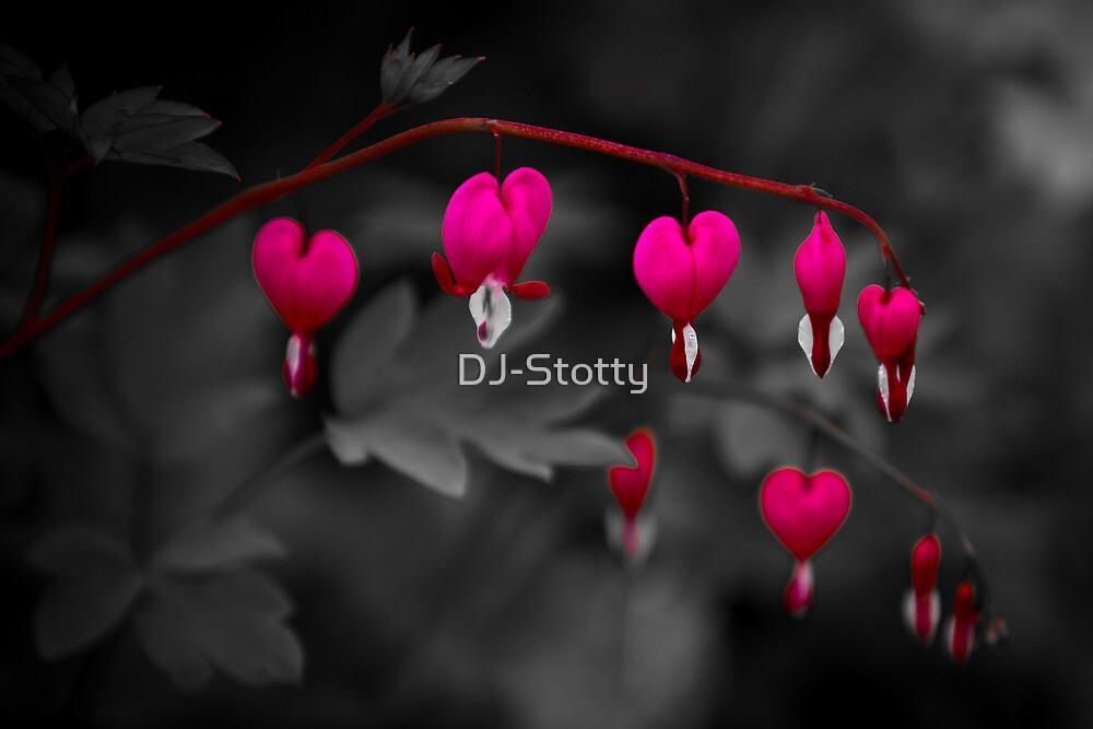 Bleeding Hearts by DJ-Stotty
