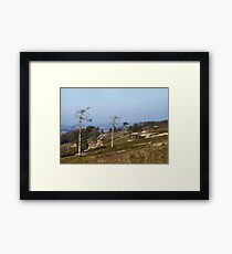 Ashdown Forest Framed Print