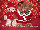 We Wish You A Merry Christmas by Ginny York