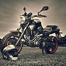 MT303 - Made To Ride by Love Through The Lens