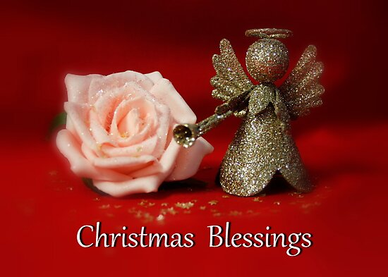 Christmas Rose by AnnDixon