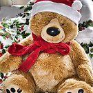 Teddy's Ready For Christmas by lynn carter