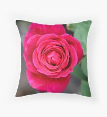 Prince William Rose Throw Pillow