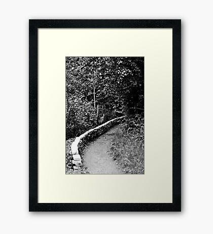 Path Through the Woods - London Framed Print