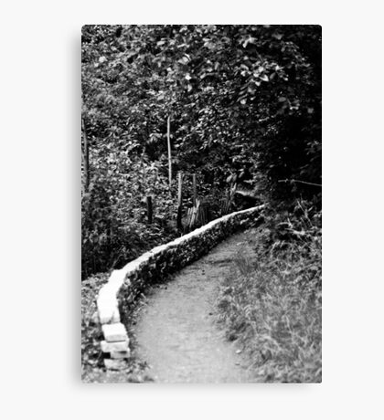 Path Through the Woods - London Canvas Print