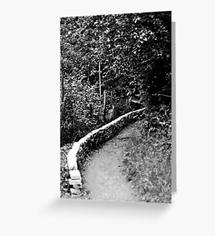 Path Through the Woods - London Greeting Card