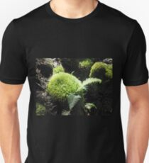 Deep in the Forest, Cradle Mountain, Tasmania, Australia. T-Shirt