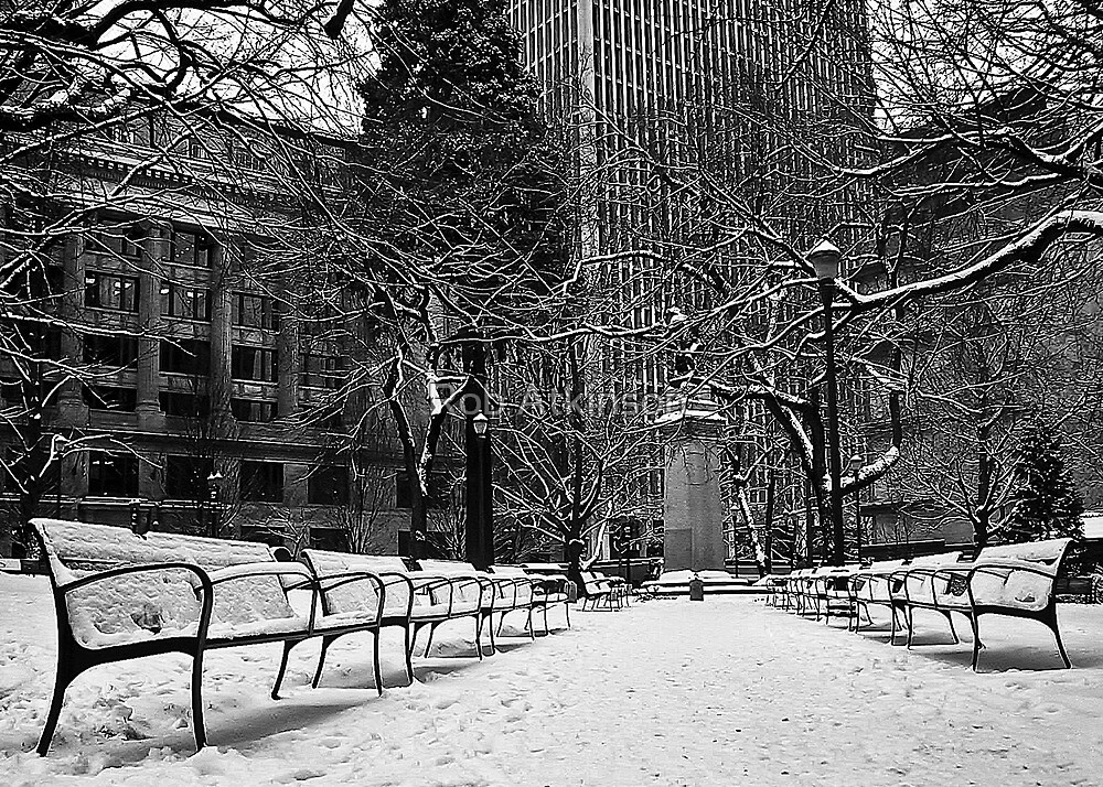 Snowy Benches by Rob Atkinson