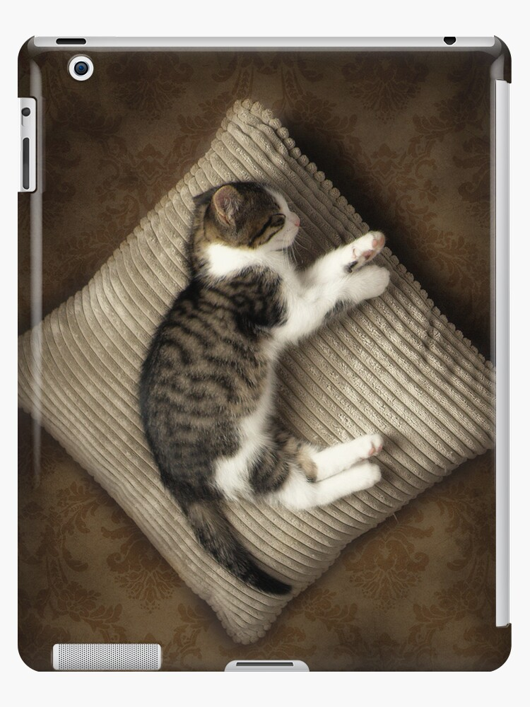 Pampurred iPad Cover by saj255