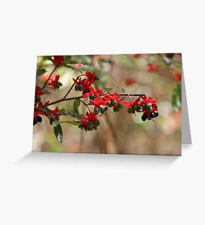 Berries and flowers Greeting Card