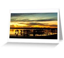 MANGROVE SUNSET AT TOORADIN Greeting Card