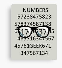 NUMBERS GEEK Canvas Print
