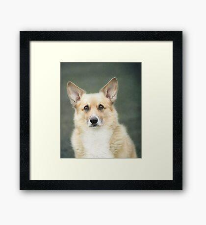 Kabo's Birthday Portrait ~ Framed Print