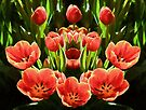Tulips           (EH) by Ray Warren