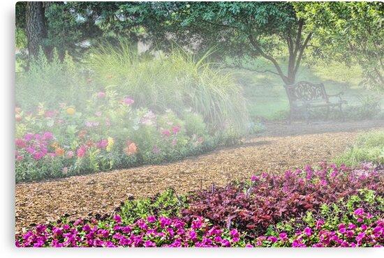 Mist In The Garden by Linda Miller Gesualdo